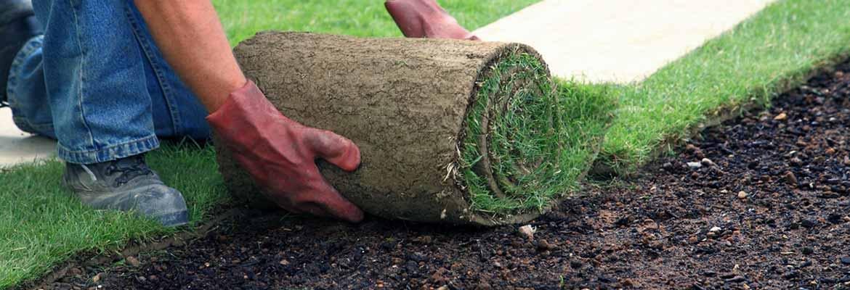 Mulch, Sod & Seed