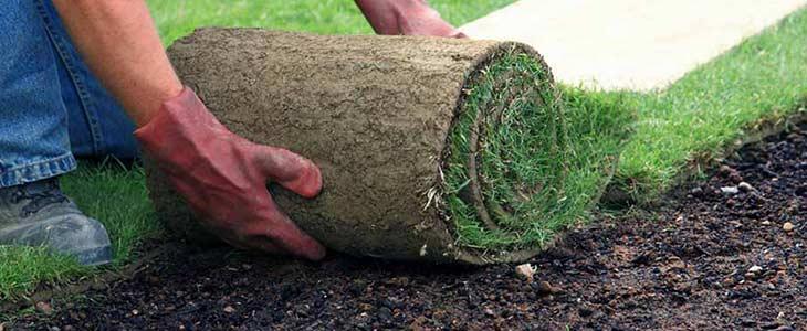 Mulch, Sodding & Seeding Services